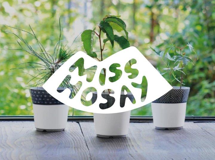 Miss Hosay